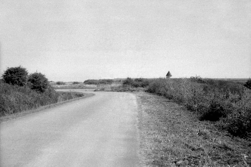 Route de l'Herbaudière, Noirmoutier (Vendée).